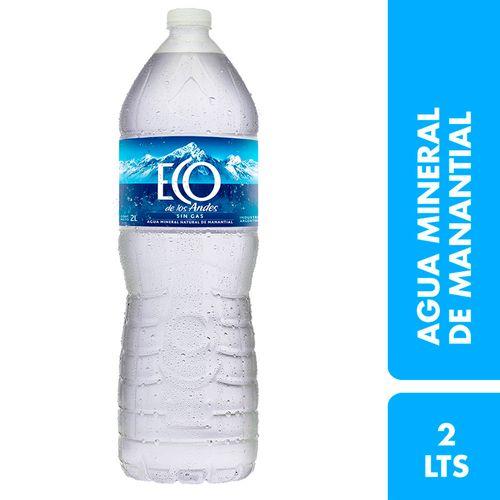 Agua Mineral Eco De Los Andes Sin Gas 2 L