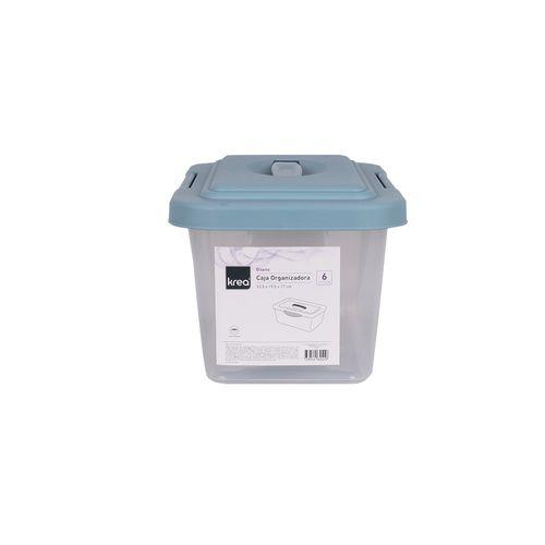 Caja Organizadoraanizadora 6lt Diseno 2.2 - Pp