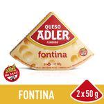 Queso-Adler-Fontina-100-Gr-1-6250